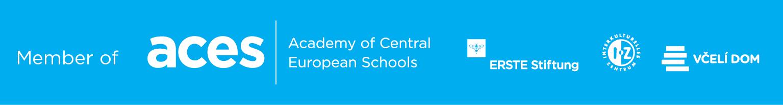 aces-Banner_schools-websites_BLUE