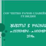Kartinka_RS_09-11_2014